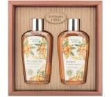 Bohemia Gifts Argan oil shower gel 250 ml + hair shampoo 250 ml, cosmetic set