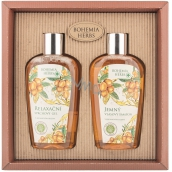 Bohemia Gifts & Cosmetics Argan oil shower gel 250 ml + hair shampoo 250 ml, cosmetic set