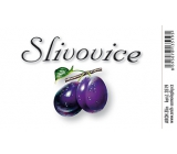 Arch Sticker Slivovice large label 8.5 x 5.5 cm 1 piece