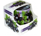 Admit Black Currant - Black currant scented candle in glass 80 g