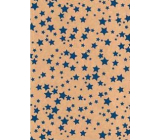 Ditipo Gift wrapping paper 70 x 200 cm Christmas KRAFT blue stars
