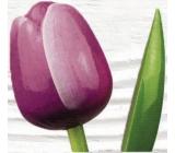 Wooden tulip 34 cm purple-white 9532