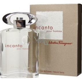 Salvatore Ferragamo Incanto Homme EdT 50 ml eau de toilette Ladies