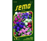 Semo Astra Chinese Low Color Carpet - Mix 0,5 g