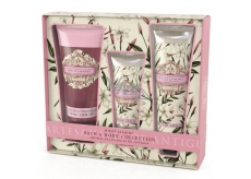 Somerset Toiletry White Jasmine Luxury Body Lotion 130 ml - + Shower Gel 200 ml + Luxury Hand Cream 60 ml, cosmetic set