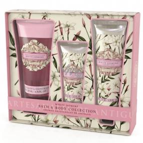 Somerset Toiletry White Jasmine luxury body cream 130 ml + shower gel 200 ml + luxury hand cream 60 ml, cosmetic set