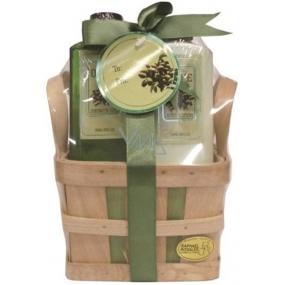 Raphael Rosalee Cosmetics Oliva shower gel 170 ml + body lotion 170 ml + sponge, cosmetic set