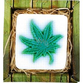 Bohemia Gifts & Cosmetics Cannabis ručně vyráběné toaletní mýdlo v krabičce 80 g