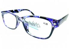 Berkeley Reading glasses +1 plastic black-purple 1 piece MC2197