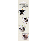 Albi Magnetic Mini Tabs Dogs 4 pieces