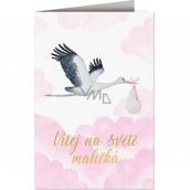 Nekupto Baby birthday card Stork with baby pink 115 x 170 mm 3600 F