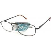 Berkeley Reading glasses +1.0 brown metal CB02 1 piece MC2005