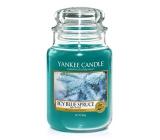 YC.sklo3 / Icy Blue Spruce
