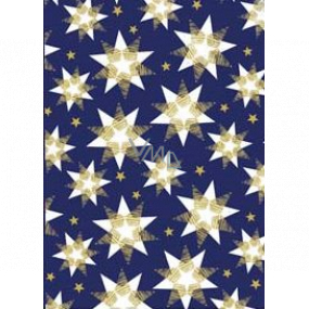 Ditipo Gift wrapping paper 70 x 200 cm Christmas blue white-gold stars