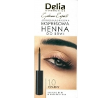 Delia Instant Eyebrown Tint eyebrow color 1.0 black 6 ml