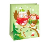 Ditipo Gift Paper Bag Large Light Green 2 Owls Glossy Laminated 26,4 x 13,6 x 32,7 cm AB