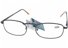 Berkeley Reading glasses +2.0 brown metal 1 piece MC2005