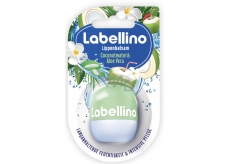 Labellino Coconut + Aloe 7g 8840 Lip Balm