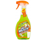 Mr. Muscle Clean & Shine Citrus Lime Window and glass cleaner spray 500 ml