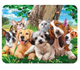 Prime3D magnet - Puppies 9 x 7 cm