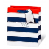 BSB Luxury gift paper bag 23 x 19 x 9 cm Blue-white stripes LDT 392 - A5