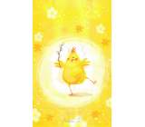 Nekupto Easter bag chicken 180 x 360 mm 005 01 NVE