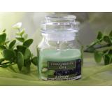 Lima Aroma Dreams Black Grape & Kiwi Aromatic Candle Glass with Lid 120 g