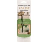 Yankee Candle Vanilla Lime - Vanilla with lime Classic scented car tag paper 12 g
