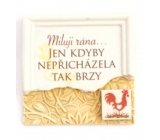 Albi Magnet with the message I love the morning only if it did not come so soon 7 x 7 x 0.1 cm, 13