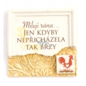 Albi Magnet with a message I love a blow, if it did not come so soon 7 x 7 x 0,1 cm, 13