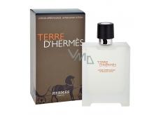 Hermes Terre D Hermes after shave 100 ml