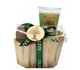 Salsa Collection Natural Oliva shower gel 120 ml + body butter 50 ml, 2-piece wooden bath