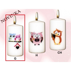 Lima Owls 2 owls candle with decal white cylinder 50 x 100 mm 1 piece