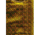 Nekupto Gift paper bag hologram standard 10 x 33 cm Gold THLH