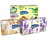 Big Soft Deluxe handkerchiefs 2 layers in a box of 100 pieces