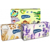 Big Soft Deluxe 2-ply paper handkerchiefs in a box of 100 pieces