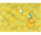 Document Case - Lemons