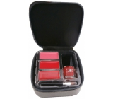 Body Collection Mini Makeup Case Cosmetic Briefcase 96142