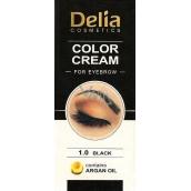 Delia Color Cream Eyebrow Cream with Argan Oil 1.0 Black 15 ml + 15 ml