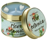 Bomb Cosmetics Botanical Scented natural, handmade candle in a tin can burns for up to 35 hours