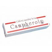 Campherol camphor massage cream 50 g