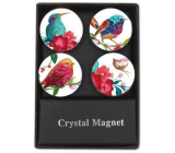 Albi Crystal Magnets Birds 4 pieces