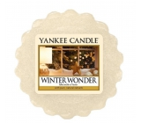 Yankee Candle Winter Wonder - Winter miracle wax in aromalamp 22 g