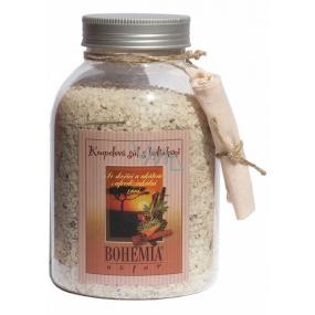 Bohemia Gifts Cinnamon and Acacia with aphrodisiac scent bath salt 1.2 kg