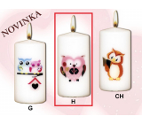 Lima Owls Pink owl candle with decal white cylinder 50 x 100 mm 1 piece