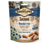 Carnilove Dog Salmon with blueberries delicious crunchy treat suitable for all dogs to support brain function 200 g