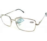 Berkeley Reading dioptric glasses +1,50 silver metal MC2 1 piece ER5050