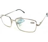 Berkeley Čtecí dioptrické brýle +1,50 stříbrné kov MC2 1 kus ER5050