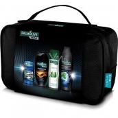 Palmolive Men Red Shower Gel 250ml + Sensitive Shaving Foam + Hair Shampoo 350ml + Mennen Stick + Etue, Cosmetic Set