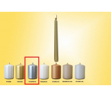 Lima Candle smooth metal silver cone 22 x 250 mm 1 piece
